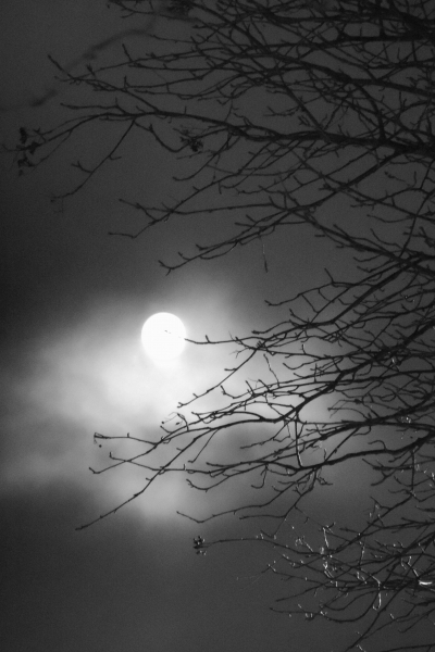 253 Moon