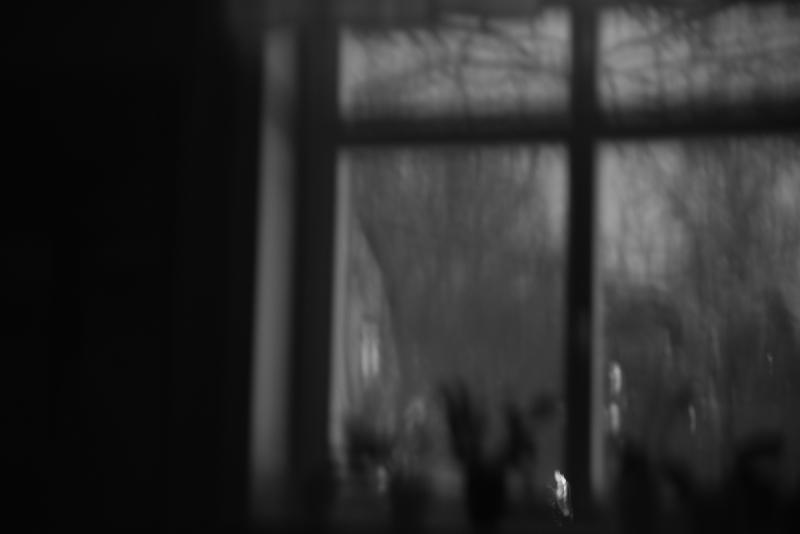 337 Från mitt fönster b