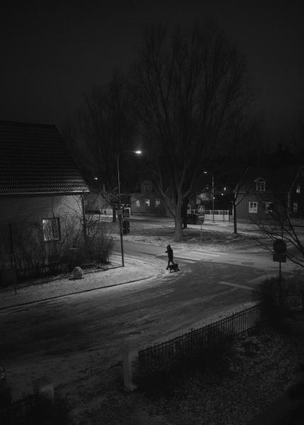 337 Från mitt fönster