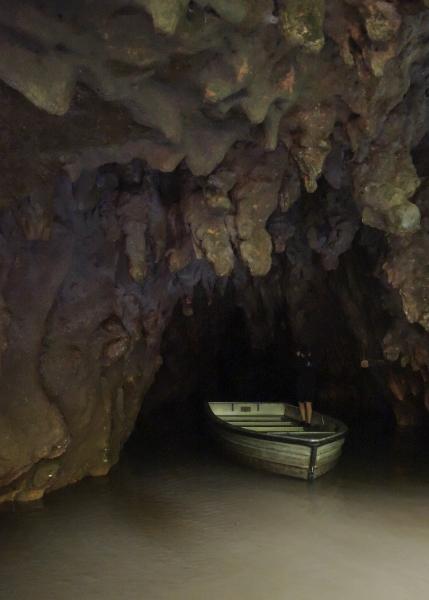 349 Gloweworm cave
